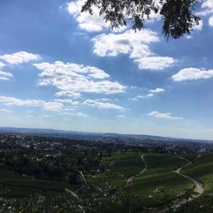 Blick Weinberg und Tal