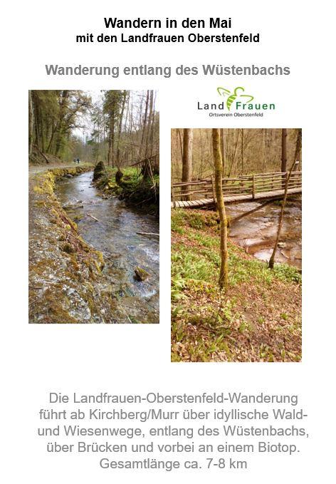Wanderung Wüstenbach Flyer