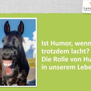 Ist Humor wenn man trotzdem lacht?